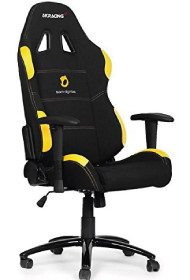 AKRacing Team Dignitas Edition.